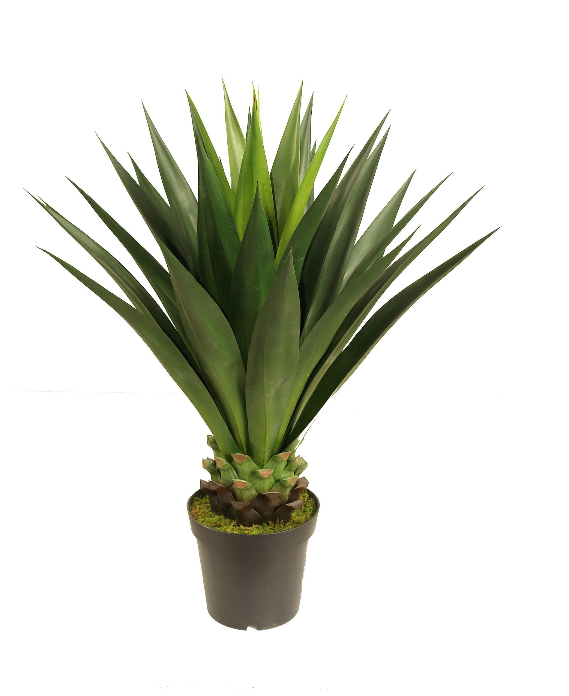 Artificial Agave Giant 1m Agave Uv Stabilised