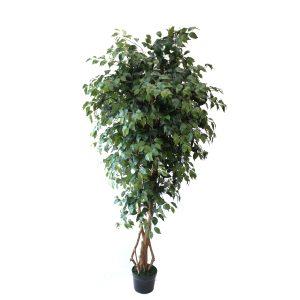 Ficus Artificial Trees
