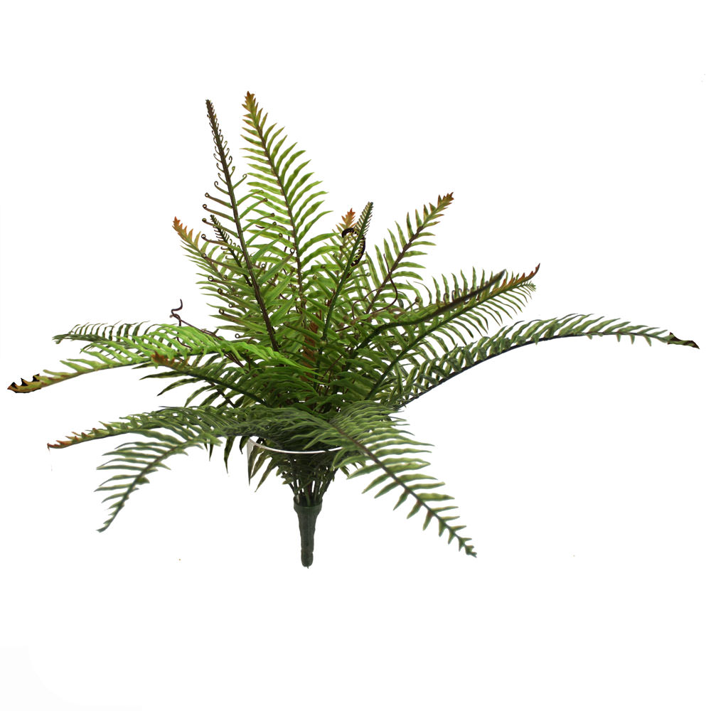 Artificial Ferns