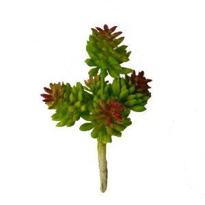 Cactus & Artificial Succulents
