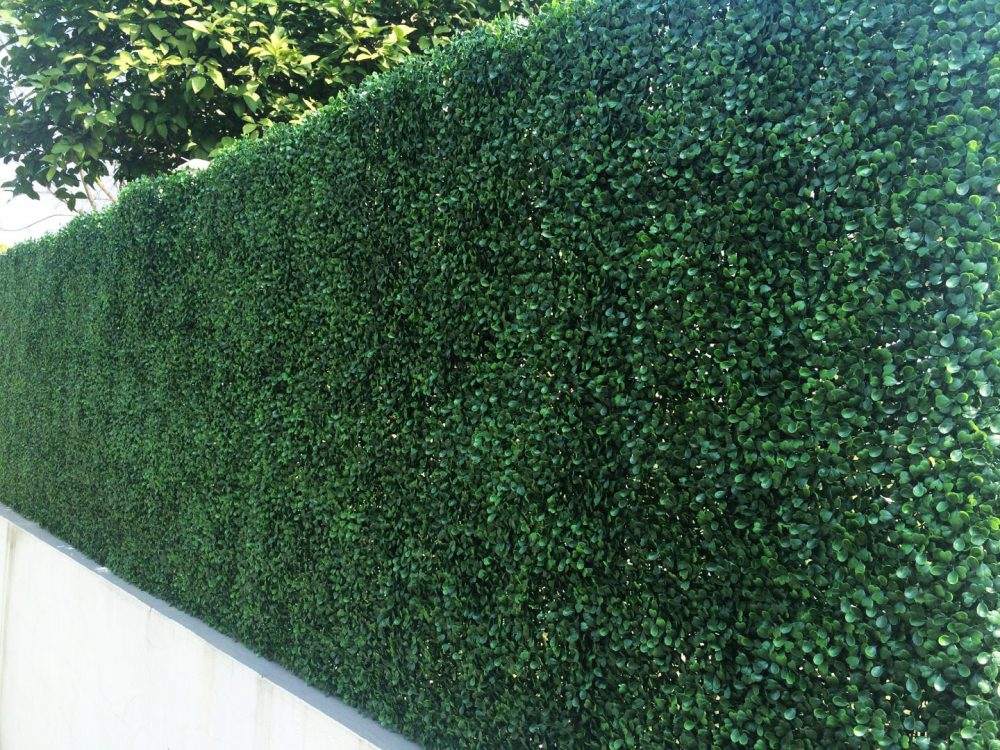 boxwood matt install