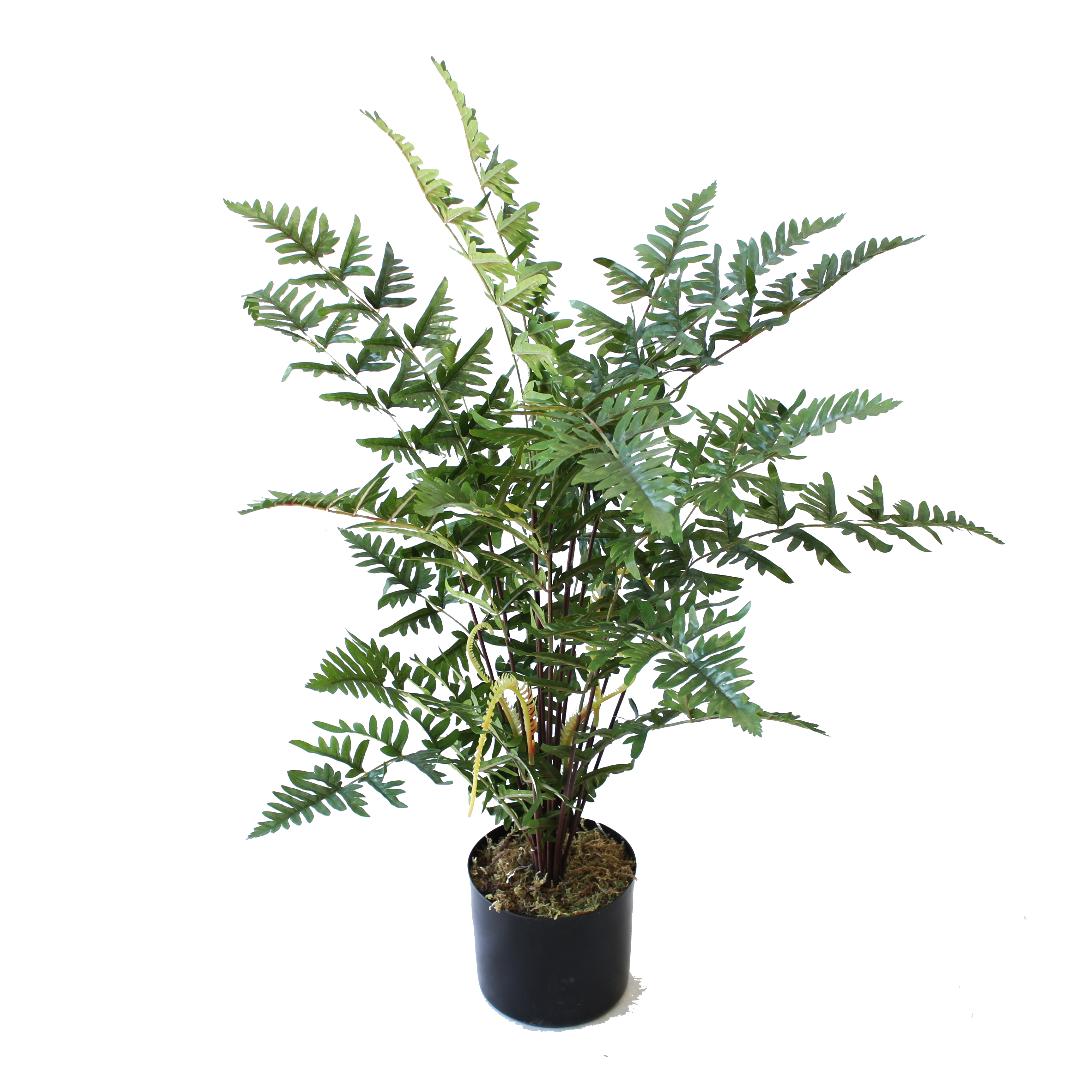 ARTIFICIAL RUFFLE FERN