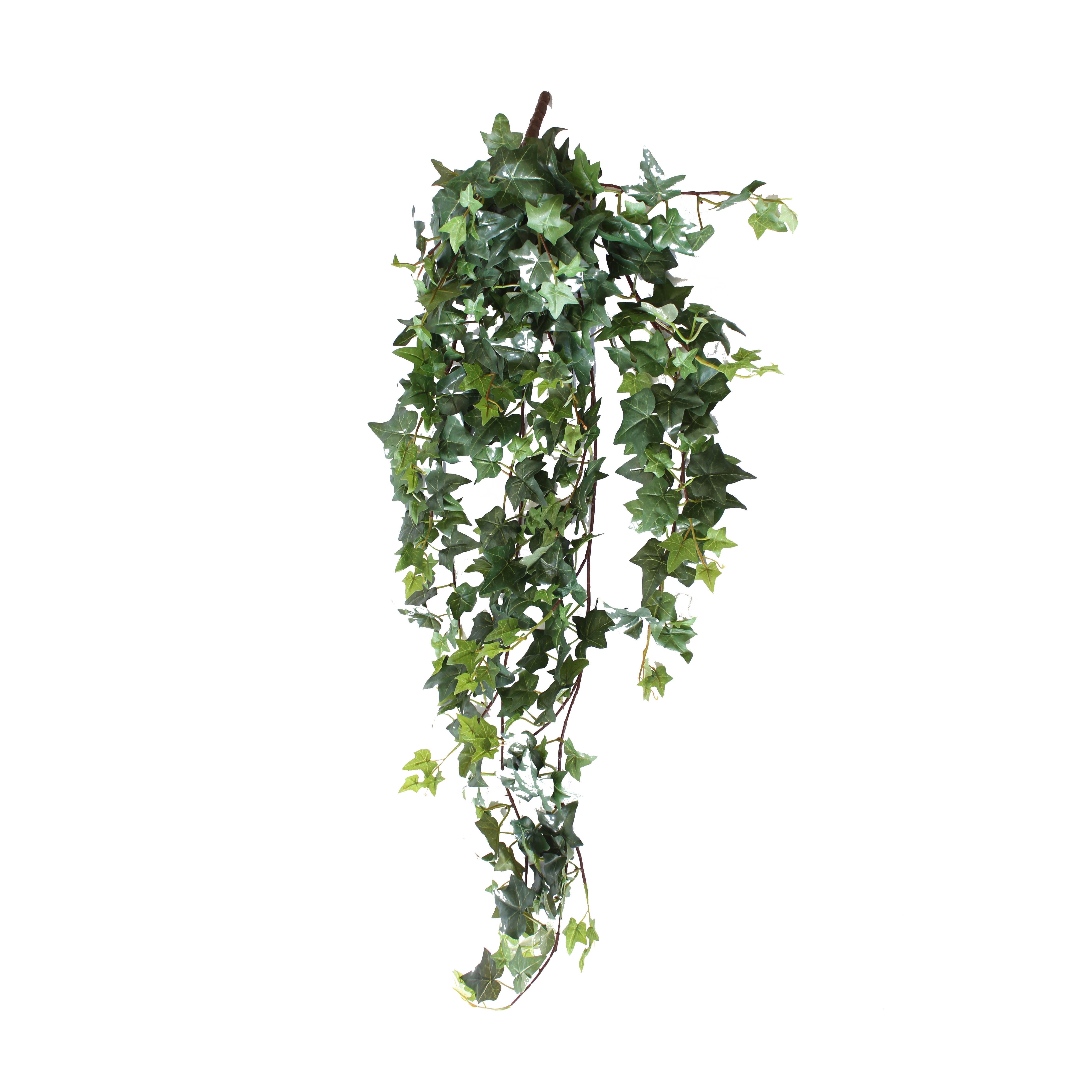 Hanging Vines & Garlands